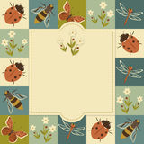 Insects vintage template Stock Images
