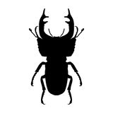 Insectsilhouet Mannetje-kever Cervus van Lucanus Schets van mannetje-kever mannetje-kever op witte achtergrond Hand Royalty-vrije Stock Fotografie