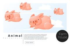 Insegna animale con i maiali per web design Fotografie Stock