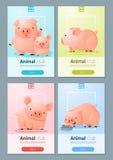 Insegna animale con i maiali per web design Immagine Stock