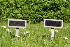Insegna in bianco due nel prato Fotografia Stock