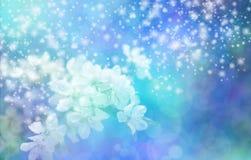 Insegna blu scintillante di nozze del fiore Fotografie Stock