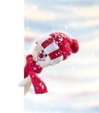 Insegna con il pupazzo di neve Immagini Stock Libere da Diritti