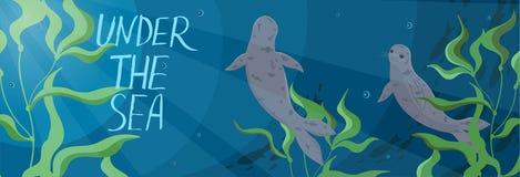 Insegna con le guarnizioni che nuotano nel mare Grafici di vettore illustrazione vettoriale