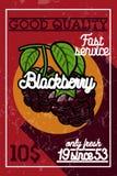 Insegna d'annata della frutta di colore illustrazione di stock