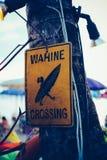 Insegna dei surfisti sulla spiaggia Fotografia Stock Libera da Diritti