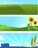 Insegna del paesaggio della natura dell'azienda agricola Fotografia Stock