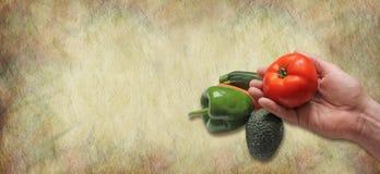 Insegna del sito Web dei prodotti dell'agricoltore Fotografia Stock Libera da Diritti