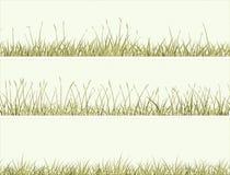 Insegna dell'erba di prato astratta. Immagine Stock