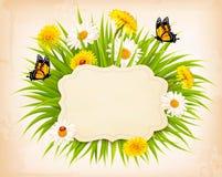 Insegna della primavera con erba, i fiori e le farfalle Immagini Stock