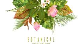 Insegna delle piante tropicali Fotografia Stock Libera da Diritti