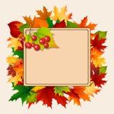 Insegna di autunno con le foglie variopinte Fotografie Stock