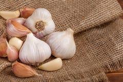 Insegna di orizzontale dell'aglio Eco che coltiva concetto Interi agli e chiodi di garofano sul pezzo di fondo strutturato di lic Immagini Stock