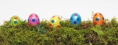 Insegna di panorama delle uova di Pasqua Fotografia Stock