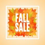 Insegna di vendita di caduta con le foglie di acero di caduta Immagine Stock
