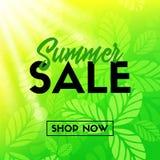 Insegna di vendita di estate con le foglie verdi Negozio ora Immagine Stock Libera da Diritti