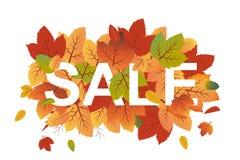 Insegna di vettore di autunno con le foglie arancio e verdi di caduta che riguardano il testo di vendita illustrazione vettoriale