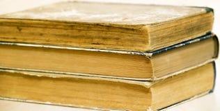 Insegna di web di vecchi libri Fotografie Stock Libere da Diritti