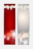 Insegna e carta del sito Web dei fiocchi di neve di Natale Fotografia Stock Libera da Diritti