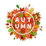 Insegna luminosa per la vendita di autunno Fotografie Stock Libere da Diritti