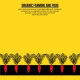 Insegna minimalista delle carote sulla terra illustrazione di stock