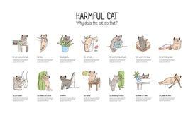 Insegna orizzontale con il gatto impertinente che fa le varie cose - rubando alimento, graffiando mobilia, cavi di rosicchiamento illustrazione di stock