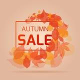 Insegna per le vendite e gli sconti di autunno Fotografie Stock Libere da Diritti