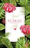 Insegna tropicale di verticale del fiore Fotografia Stock