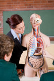 Insegnante di biologia Immagini Stock