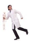 Insegnante divertente con lo scheletro isolato Immagine Stock