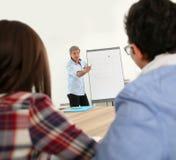 Insegnante nell'addestramento di affari che spiega i metodi Immagine Stock Libera da Diritti