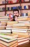 Insegnante o studente con la barba che studia nella biblioteca Uomo, scienziato che dà una occhiata dai mucchi dei libri con la s Immagine Stock