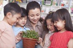 Insegnante Showing una pianta ad un gruppo di studenti Fotografia Stock