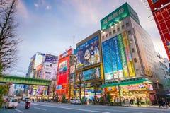 Insegne al neon e pubblicità del tabellone per le affissioni in Akihabara Fotografia Stock Libera da Diritti