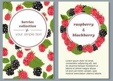 Insegne con i frutti maturi dei lamponi e dei mirtilli Illustrazione di vettore Fotografia Stock