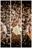 Insegne del caffè Fotografie Stock