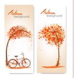 Insegne della natura di autunno con un albero e una bicicletta illustrazione di stock