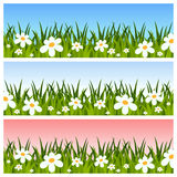 Insegne della sorgente o di Pasqua Immagini Stock Libere da Diritti