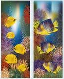Insegne subacquee con il pesce tropicale giallo Fotografia Stock Libera da Diritti