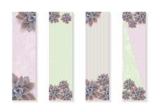 Insegne verticali botaniche di vettore messe con i fiori Graptopetalum Progettazione per i cosmetici, stazione termale, prodotti  illustrazione vettoriale