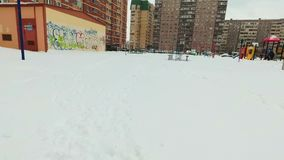 Insegua gli anelli porpora dei giochi del terrier di russell della presa in neve stock footage