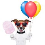 Insegua i palloni e lo zucchero filato Immagini Stock Libere da Diritti
