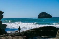 Insegua il proprietario ed il cane al filo di Trebarwith Cornovaglia, in Inghilterra con acquamarina l'Oceano Atlantico, rocce e  Fotografia Stock