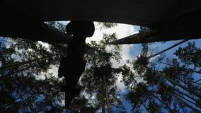 Insegua il volo del doberman attraverso la barriera sul fondo del cielo blu video d archivio