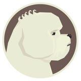 Insegua l'icona geometrica dell'avatar di stile di Bichon Frise della raccolta rotonda Fotografia Stock Libera da Diritti