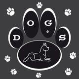 Insegua la zampa con la siluetta del cane su fondo grigio Fotografia Stock