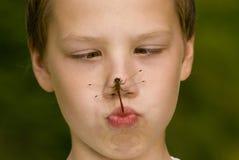 Insekt auf Gesicht stockfoto