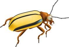 Insekt ein Programmfehler lizenzfreie abbildung