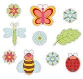 Insekt i kwiat Obraz Royalty Free