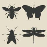 Insekt ikony set ilustracji